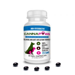 CannaPaws CBD Gel Capsules for Pets