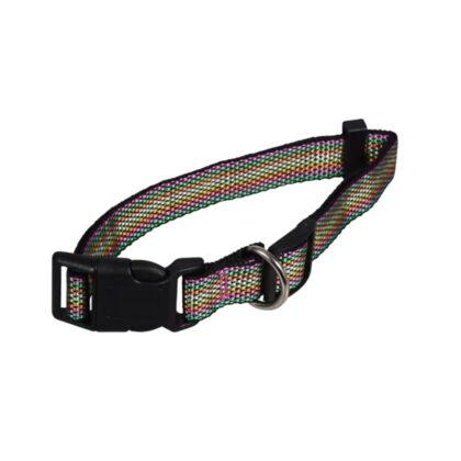 Large Multi Colored Dog Collar