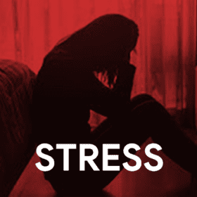 Canna Living CBD for Stress